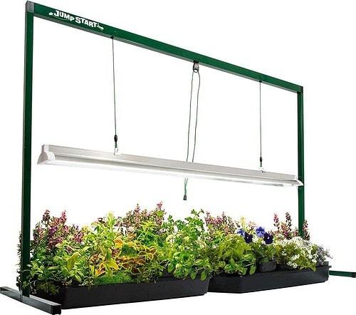 best grow lights for succulents