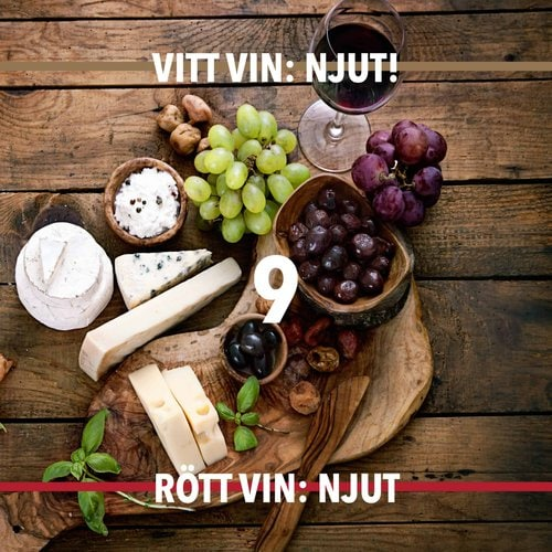 Vin guide hungry wines