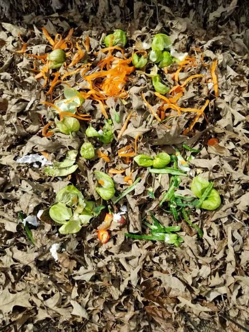 How to Begin Composting, Compost Pile Layers