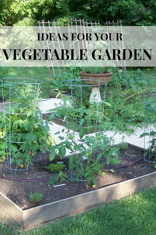 Raised Bed Vegetable Gardens with rock paths