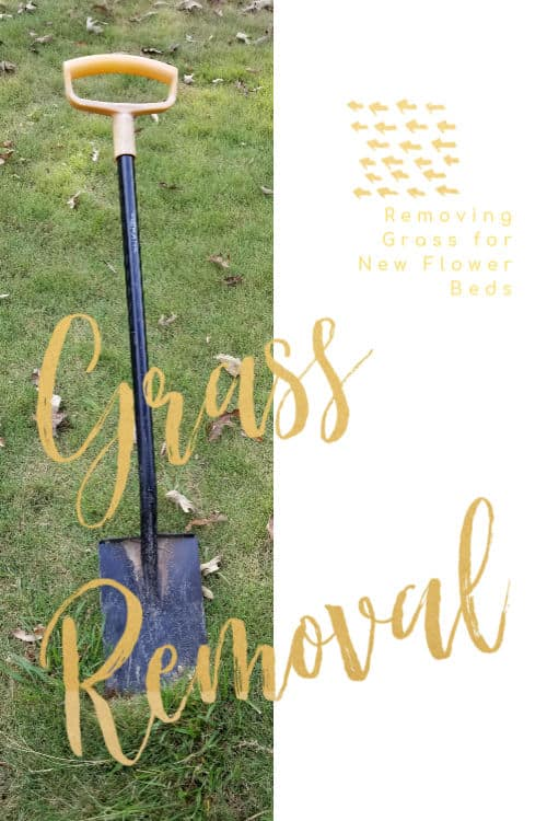 How to Remove existing grass to create a new flower bed