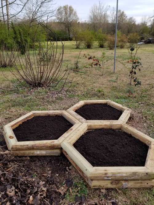 3 hexagon shaped planting beds from landscape timbers