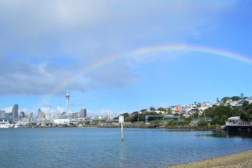 Auckland Rainbow