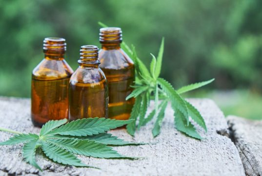 Buying Cannabidiol: How to Find CBD Distributors and Experts