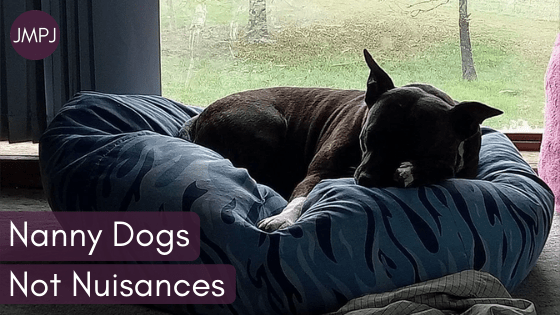 """A brindle staffy dog curled up in a beanbag with the JMPJ logo and text """"Nanny Dogs Not Nuisances"""" overlaid."""