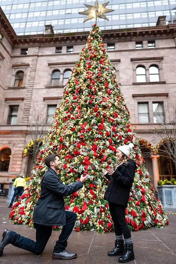 Photo The Lotte Palace Hotel Christmas Tree Wedding Proposal   VladLeto