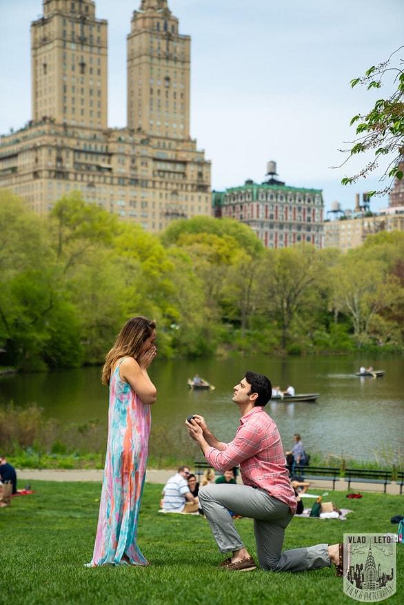 Photo Central Park Proposal   VladLeto