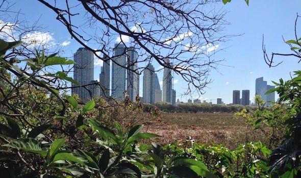 Reserva Ecologica Buenos Aires Argentina