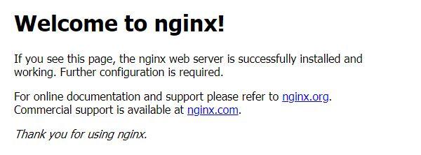 11. nginx working