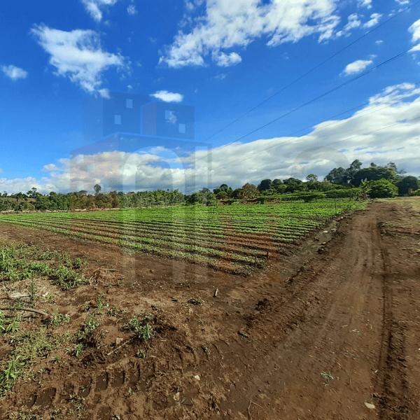 Lotes cerca a Popayán