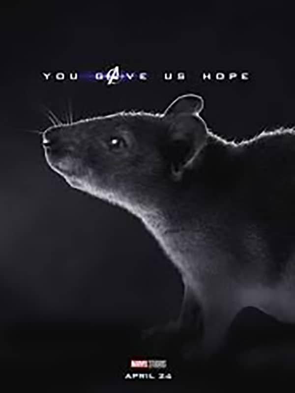 avengers endgame you gave us hope rat funnyjunk
