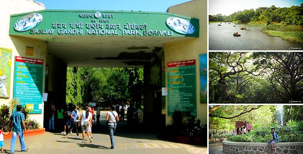 Sanjay Gandhi National Park in Mumbai. HD Wallpapers