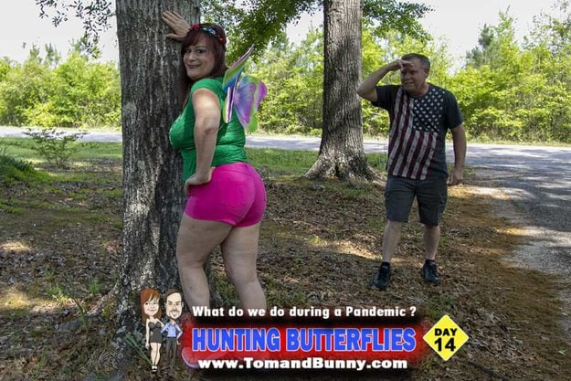 Day 14 - What do we do during a Pandemic - Hunting Butterflies