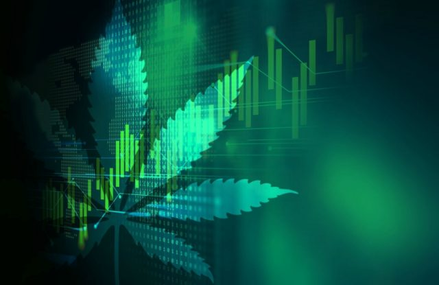 The Effects of Green Rush and the Future of Marijuana Stock Market
