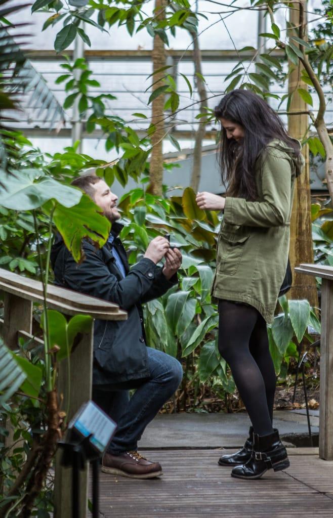 Photo 2 Wedding Proposal in Brooklyn botanical garden | VladLeto