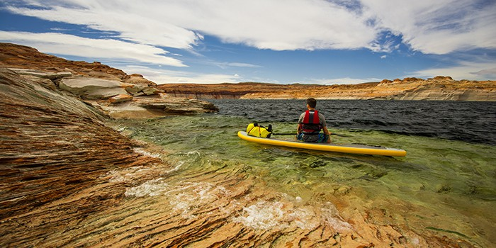 Life jackets and paddles are two essential tools for paddle boarding.