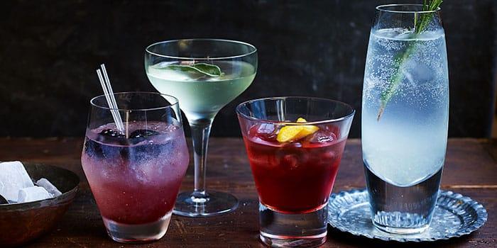 Homemade Gin Recipes   AmateurChef.co.uk