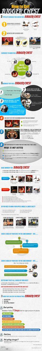 Bigger Chest Infographic