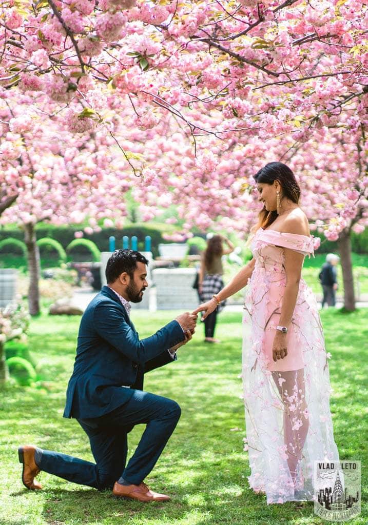 Photo 2 Cherry Blossom Marriage Proposal in Brooklyn Botanical Garden   VladLeto