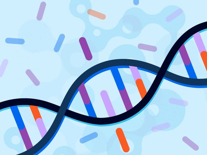 MTHFR Gene Mutations