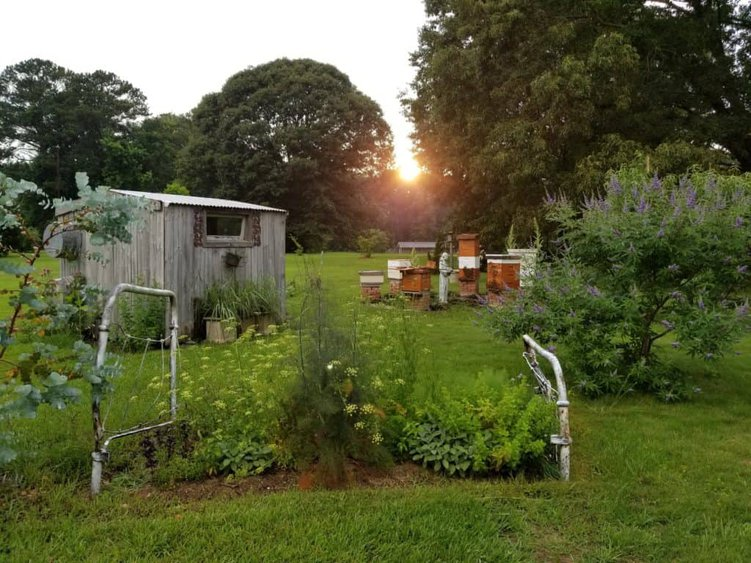 Using an actual bed frame for an Herb Bed, Bed Frame in the Garden at Sunset