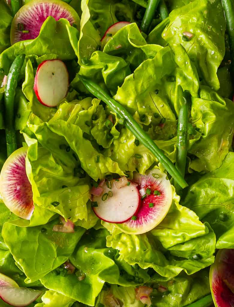 butter lettuce salad with dressing