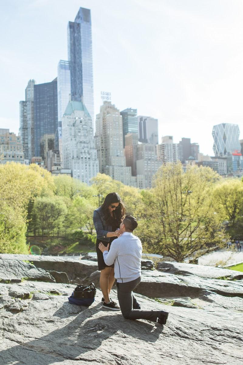 Photo Central Park the Rock proposal | VladLeto