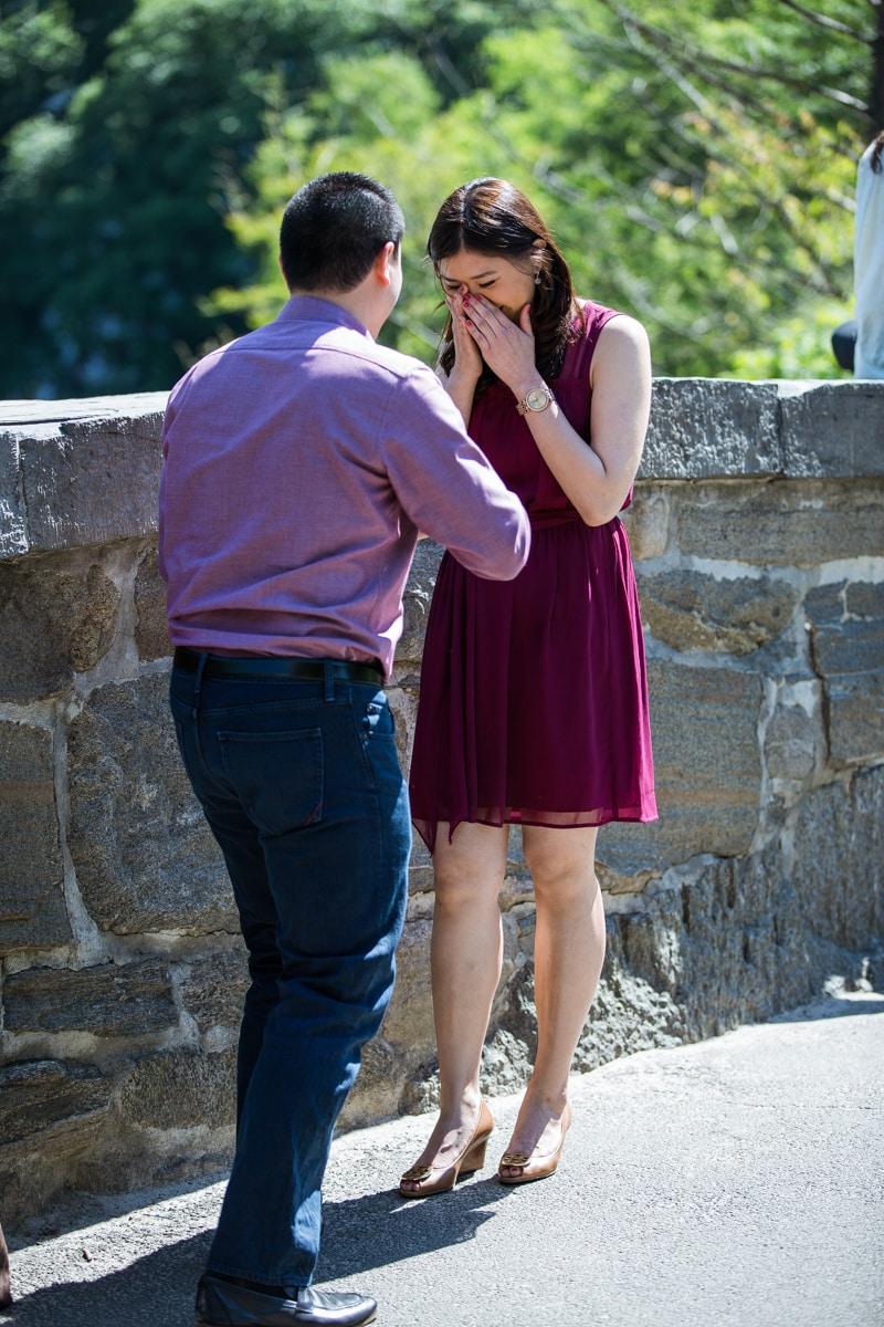 Photo 2 Gapstow bridge marriage proposal | VladLeto