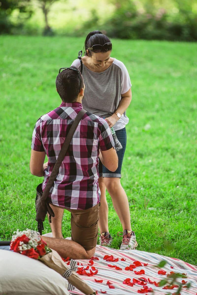 Photo 5 Central Park Picnic Proposal
