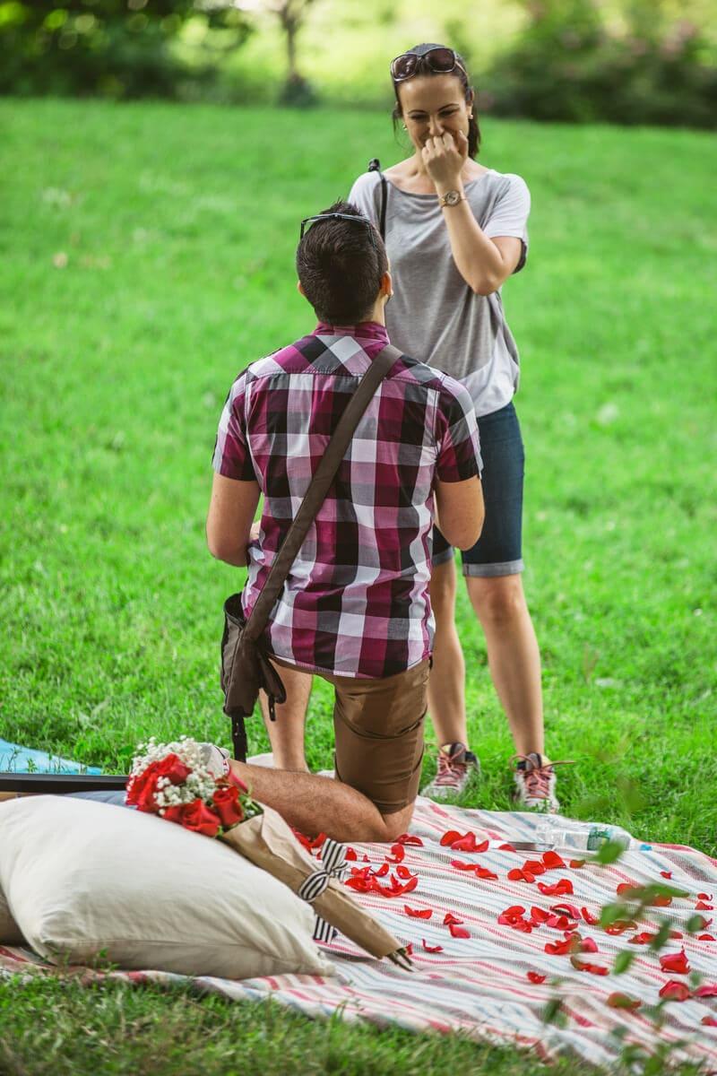 Photo 4 Central Park Picnic Proposal