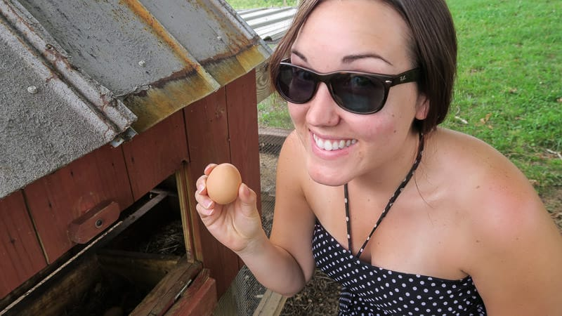 Brooke collecting eggs on the South Carolina farm