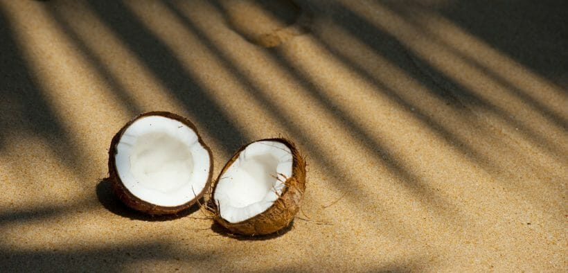 how-to-open-a-coconut