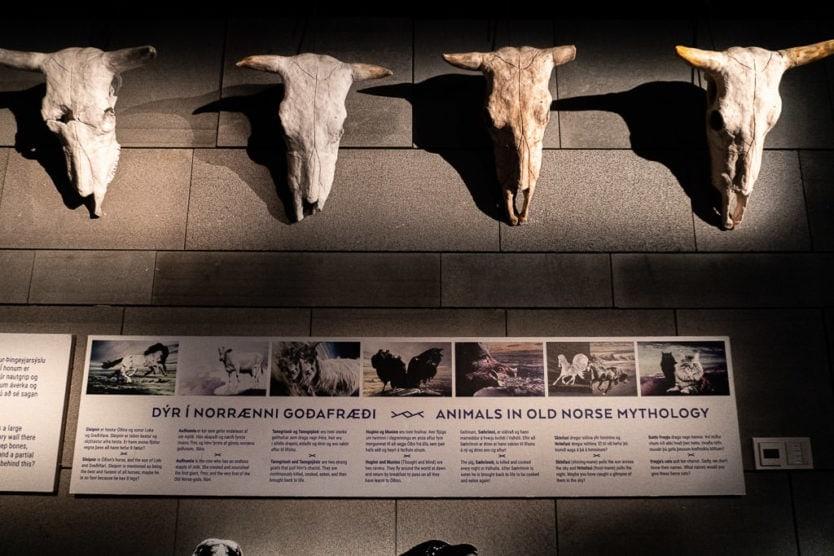 settlement exhibition mythological animal exibit