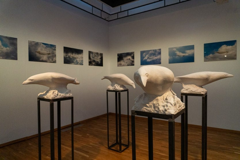 white raven exhibit at Kjarvalsstaðir - Reykjavík Art Museum