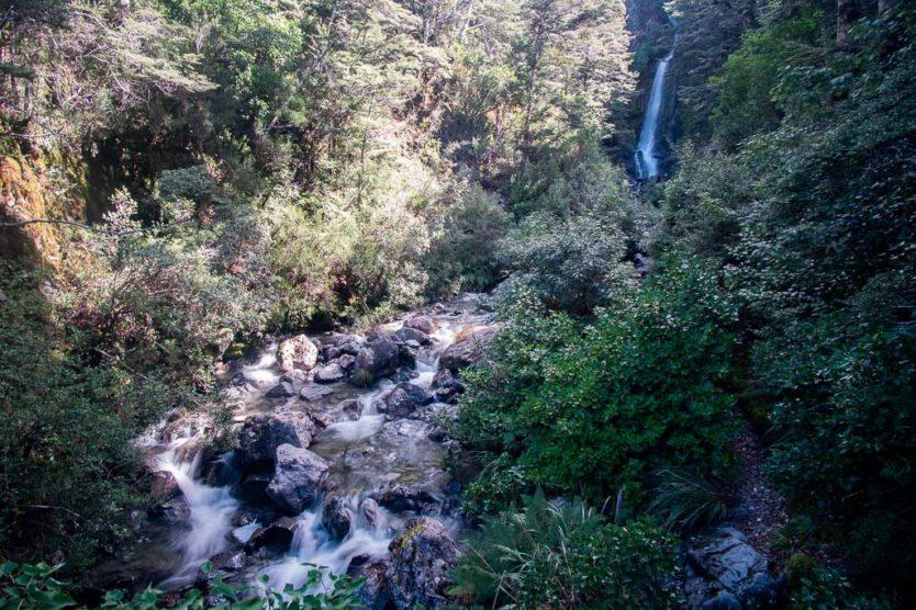 Avalanche Creek Falls in arthur's pass