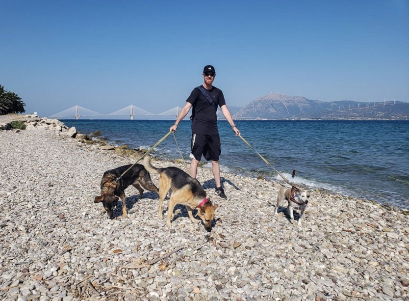 walking three dogs in greece by the water while pet sitting