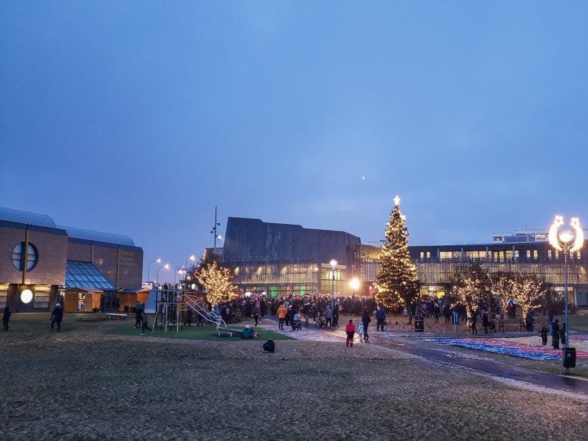 iceland christmas tree lighting
