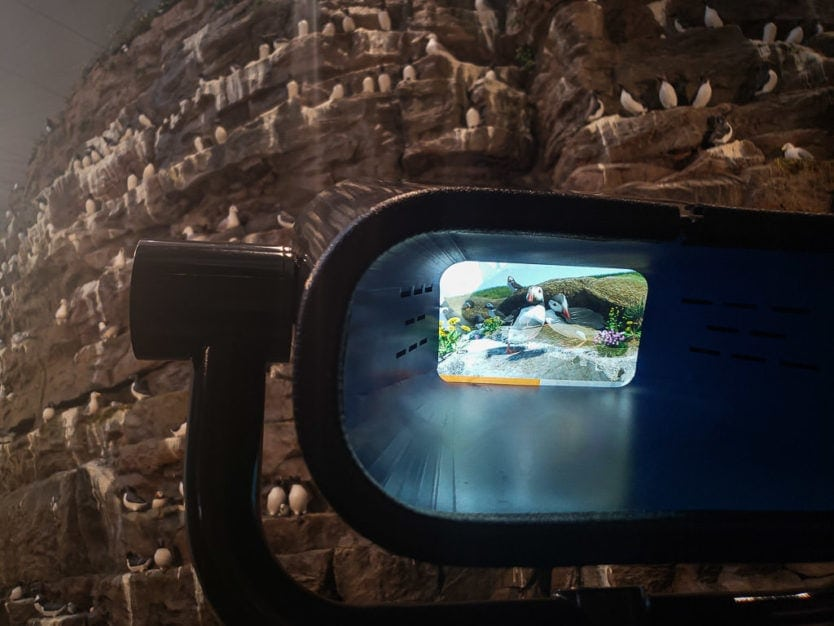 Looking through one of the interactive viewfinders at the Látrabjarg Cliffs exhibition in the perlan museum