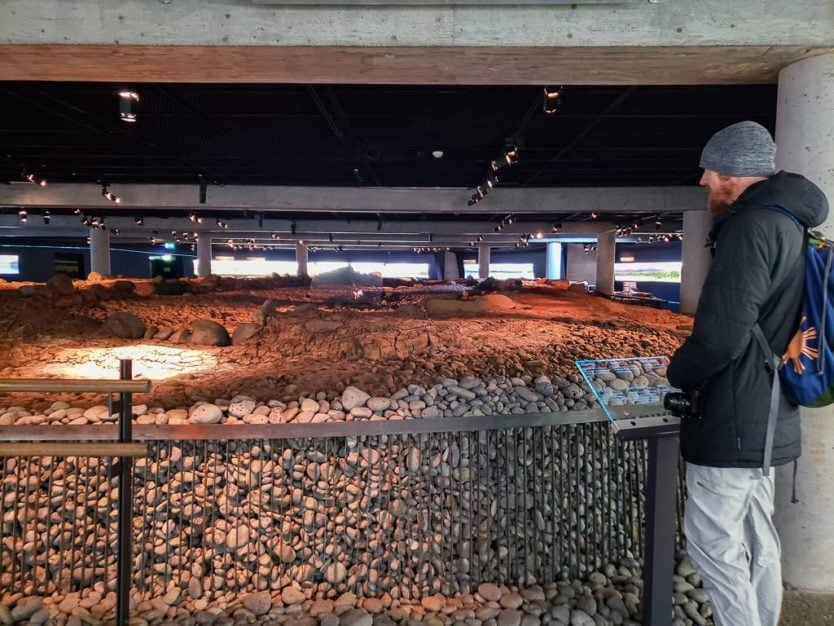 buddy looking at viking hall at settlement exhibition in reykjavik