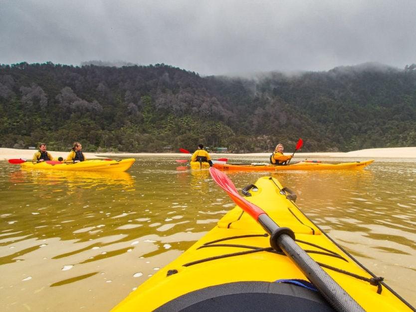 group kayaking around the shallows of bark bay in abel tasman national park