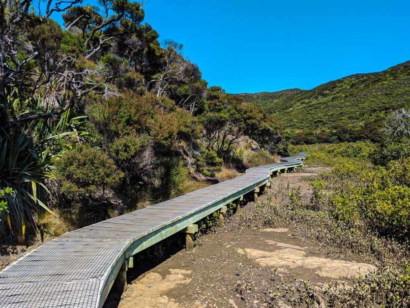 trail near Tapotupotu Beach near cape reinga northland new zealand