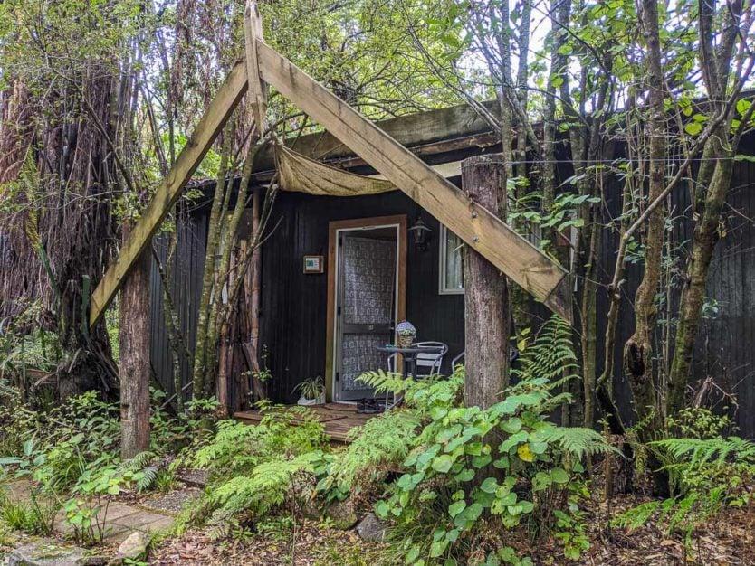 outside of our sustainably built jungle hut style accommodations near rotorua at Mount Tutu Eco-Sanctuary