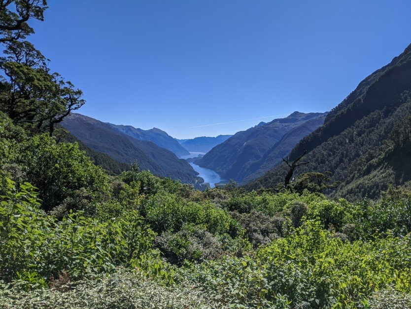 real journeys doubtful sound tour across wilmot pass