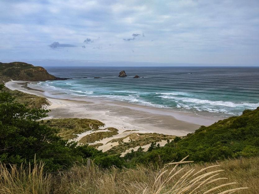beach on otago peninsula in new zealand