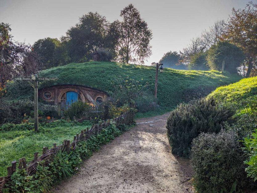 visiting hobbiton in new zealand hobbit holes