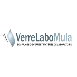 logo VLM