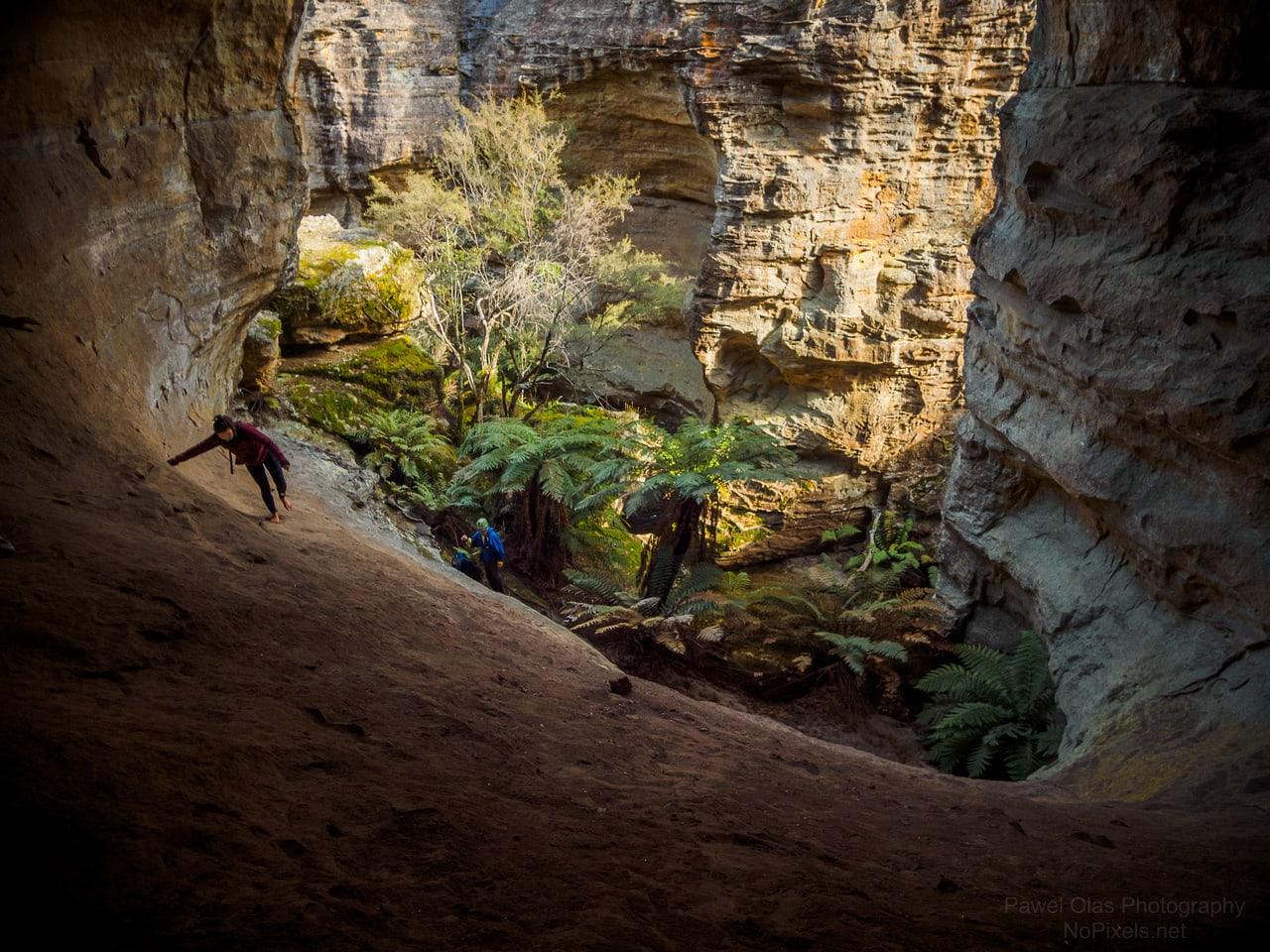 accoustic (sunnyside) canyon