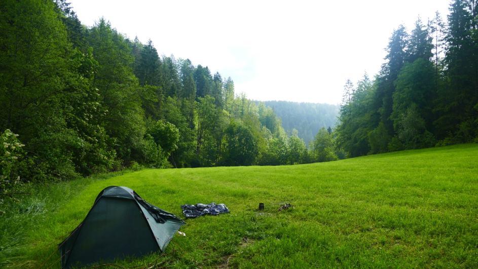 Schwarzwald-Homepage-100