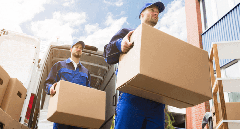 Mover Packers