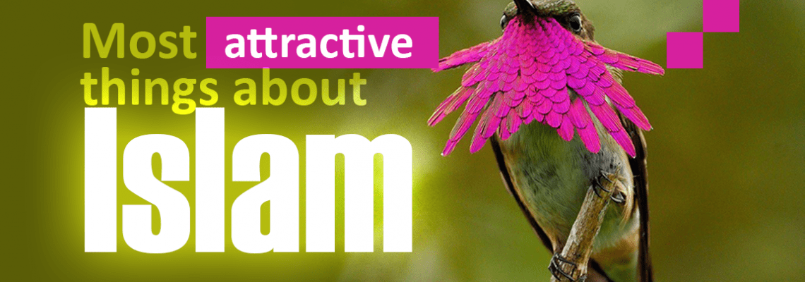Colorful bird,10 Most attractive things about Islam